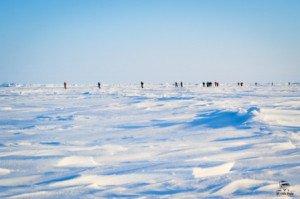 020 Marathon du Pôle Nord 09-04-2017