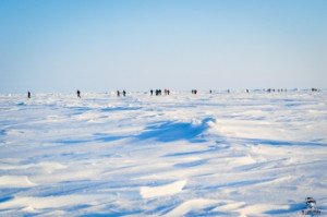 021 Marathon du Pôle Nord 09-04-2017