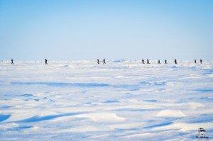 022 Marathon du Pôle Nord 09-04-2017