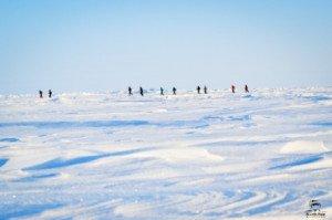 023 Marathon du Pôle Nord 09-04-2017
