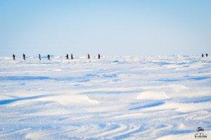 024 Marathon du Pôle Nord 09-04-2017
