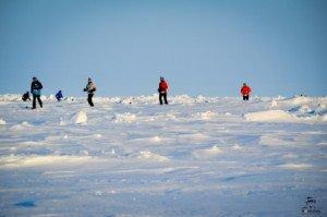 026 Marathon du Pôle Nord 09-04-2017